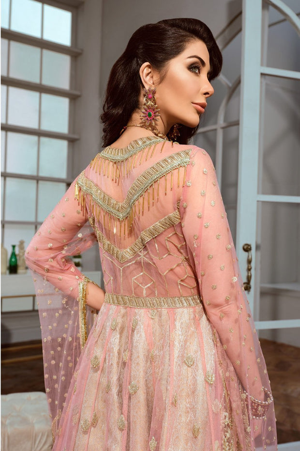 Pakistani Chiffon Frock for Party in Pink Color Backside
