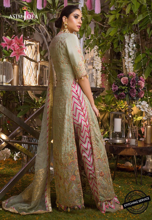 Pakistani Chiffon Wedding  Party Wear Backside View