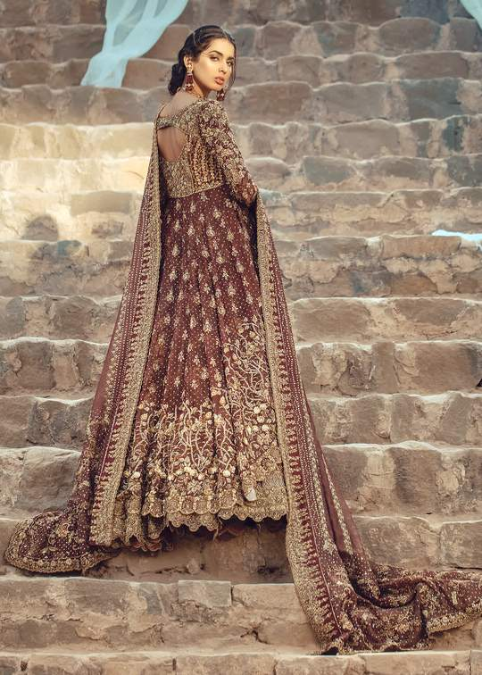 Pakistani Designer Frock Lehnga Outfit Backside Look