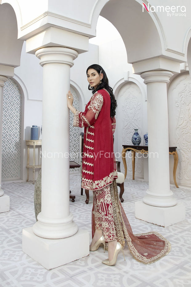 Pakistani Embroidered Chiffon Dress for Party Backside Look