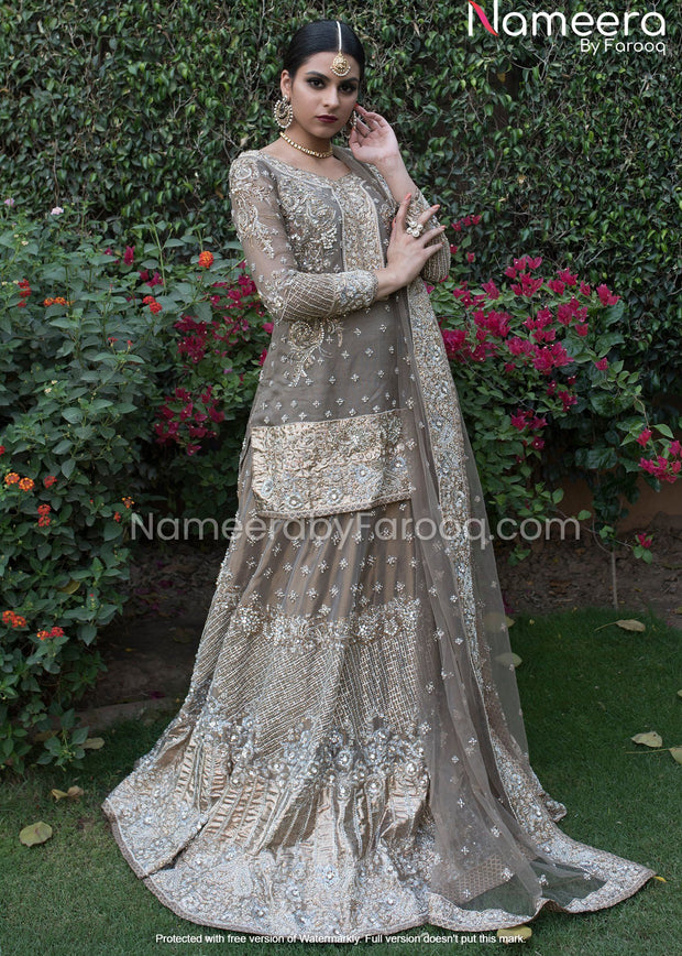 Pakistani Kameez Lehenga for Wedding Party Wear