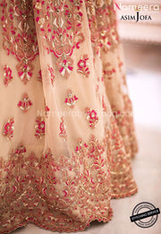 Pakistani Lehenga Choli for Girls with Embroidery Look