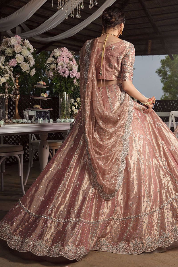 Pakistani Valima Lehnga Choli with Embroidery Backside Look