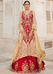 Pakistani Bridal Lehnga with Trail Shirt for Wedding Overall Look