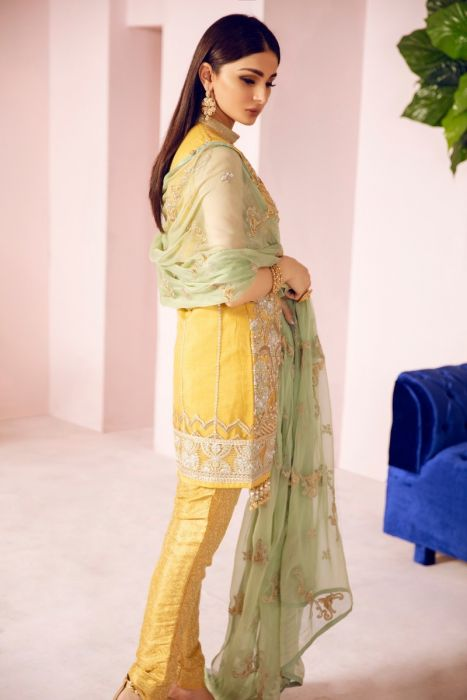 Pakistani Designer Fancy Dress in Mustard Color Backside View