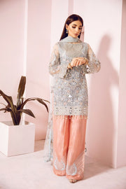 Pakistani Fancy Party Dress in Sky Blue Color  Front Look