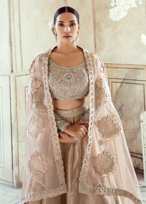 Pakistani Wedding Bridal Lehnga Dress in Ice Pink Color Close Up