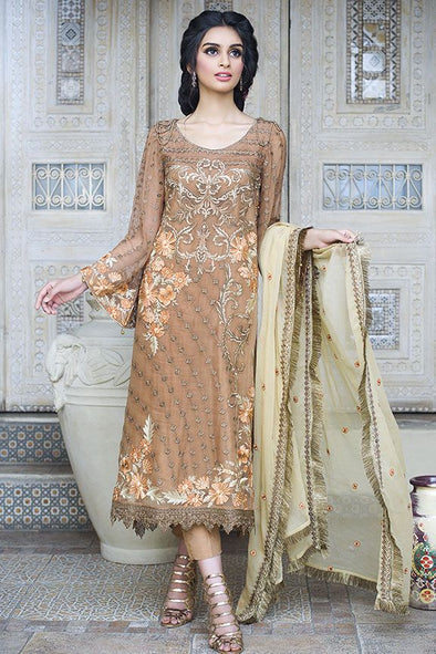 Beautiful Pakistani brown chiffon dress for party
