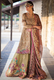 Elegant Pakistani designer outfit in vibrant gold color