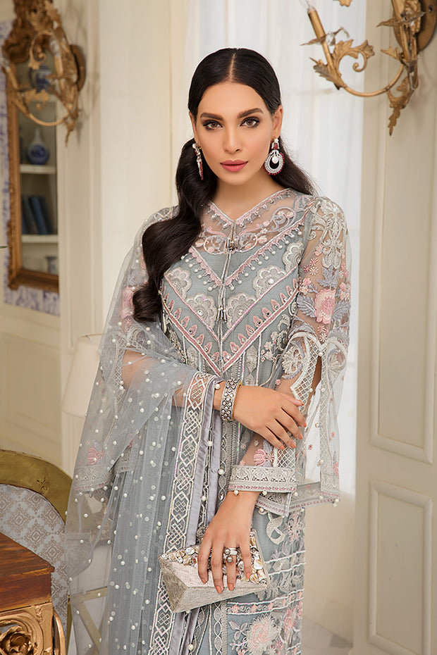 Beautiful Pakistani embroidered net outfit in silver grey color # P2331