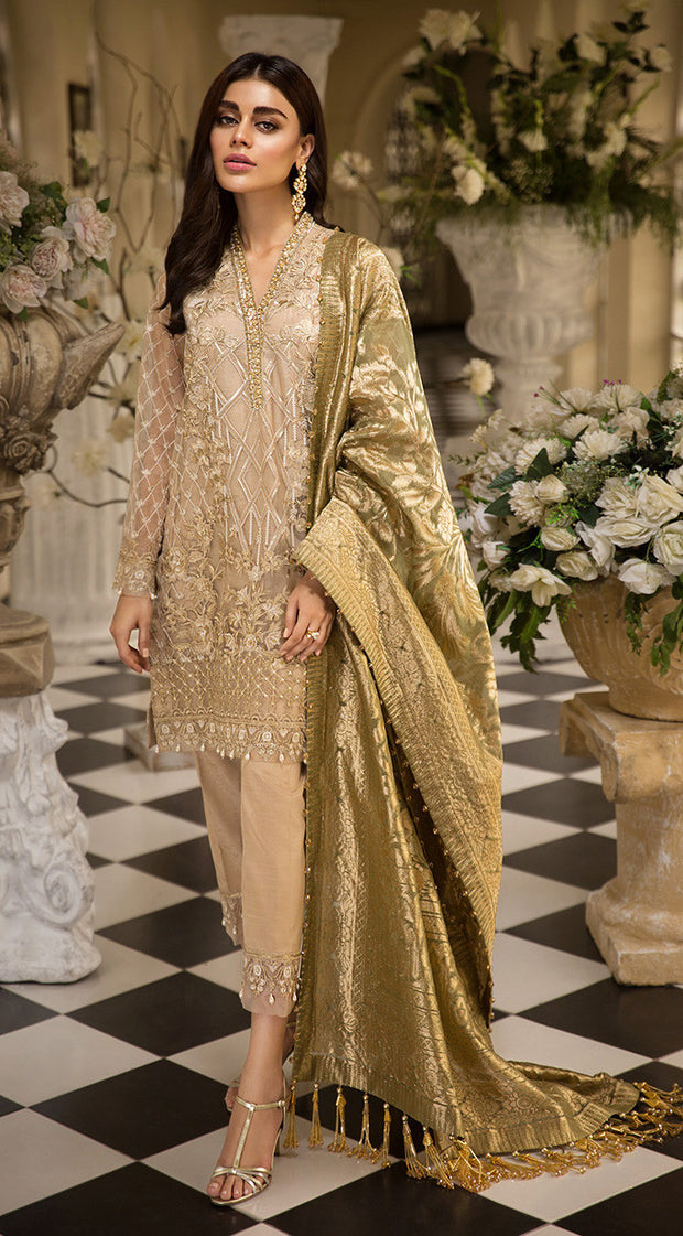 Pakistani embroidered organza dress in dark skin color