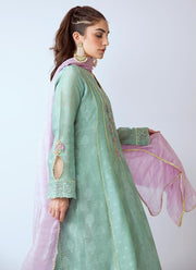 Beautiful Pakistani organza dress in green color # P2270