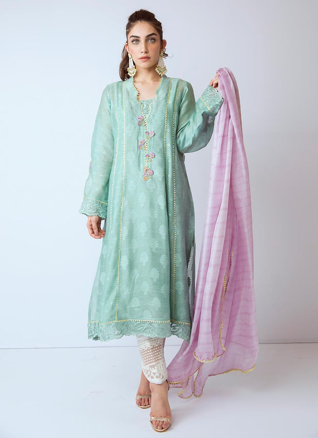 Beautiful Pakistani organza dress in green color