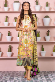 Pakistani Printed Lawn Dress