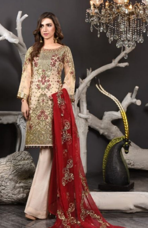 Embroidered Pakistani Chiffon Suit for Events