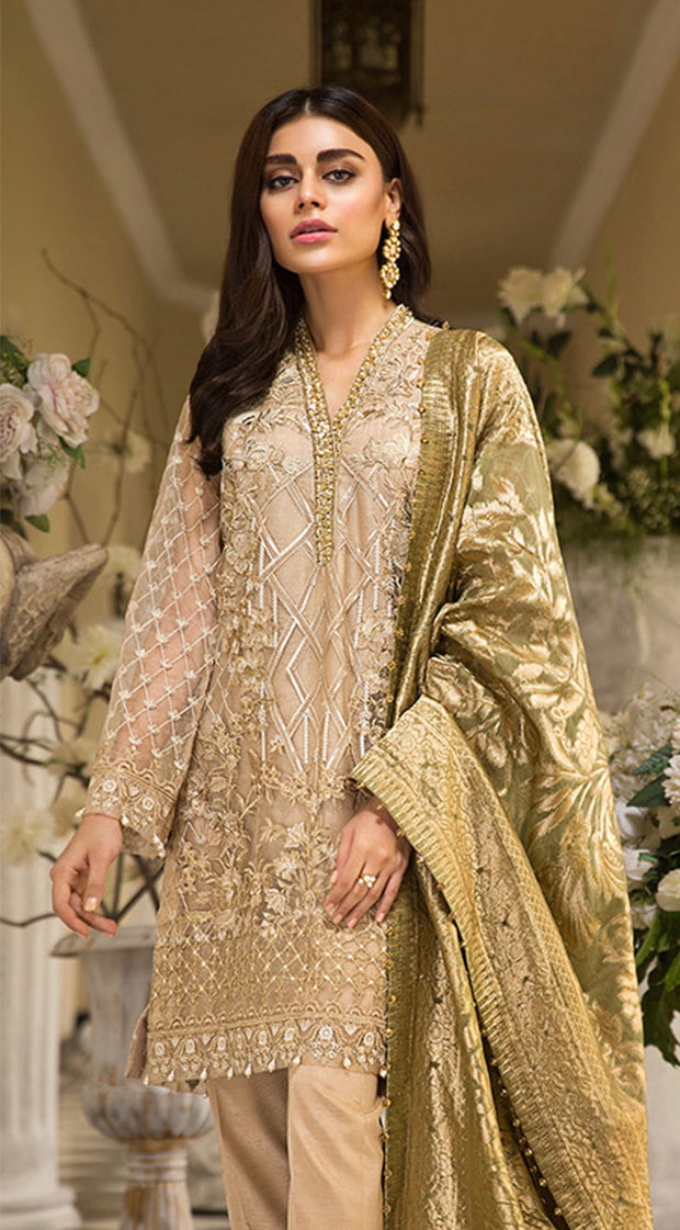 Pakistani embroidered organza dress in dark skin color # P2259