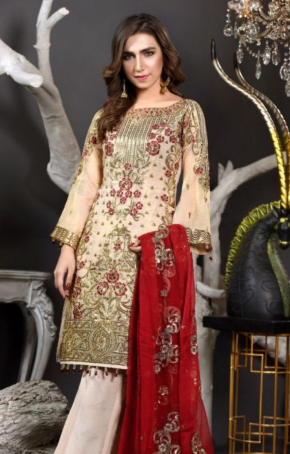 Embroidered Pakistani Chiffon Suit for Events 2