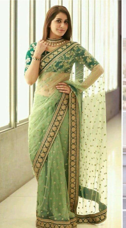 Fresh Indian Mint green Net embroidered saree