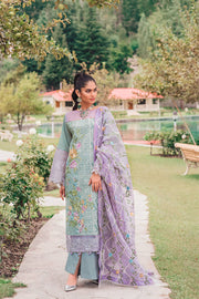 Beautiful Pakistani cotton and organza dress in tiffany blue color