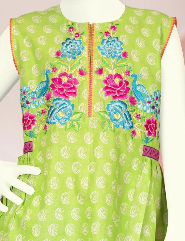 Latest frock design 2019 of Pakistani girls 2