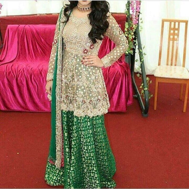 Wedding party dress with pearls nagh sequence dabka and threads work Model #228