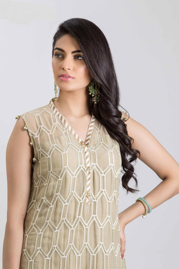 Beautiful Indian chiffon dress in lavish brown color # P2237