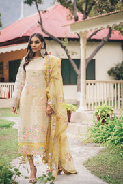 Beautiful Pakistani masuri embroidered outfit in beige color