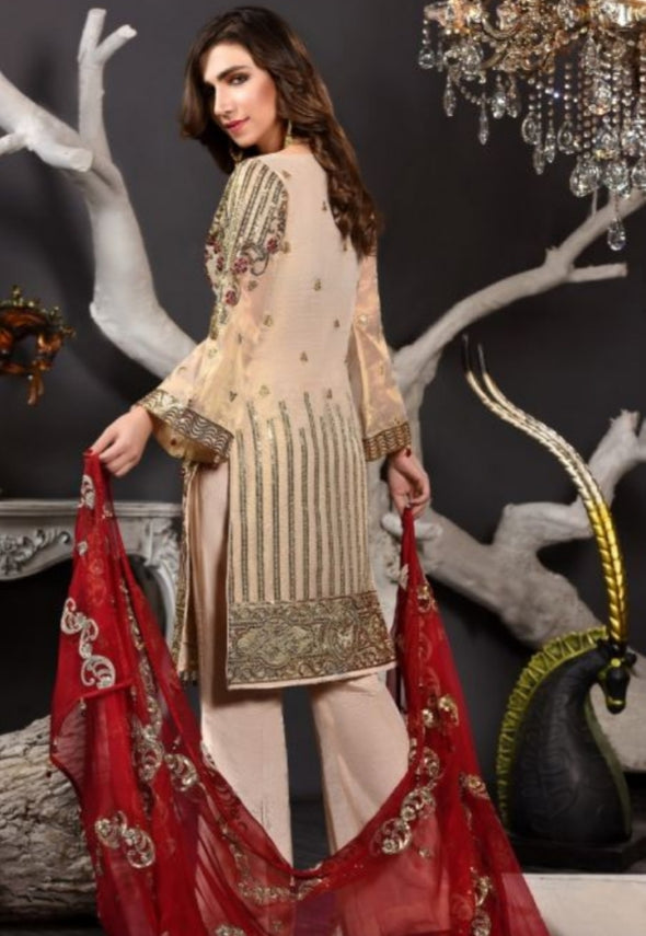 Embroidered Pakistani Chiffon Suit for Events 1