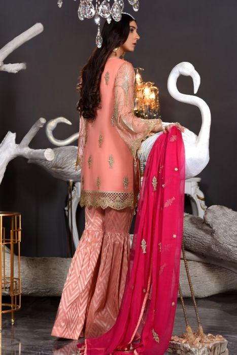 Pakistani Chiffon Dress In Peach Colour