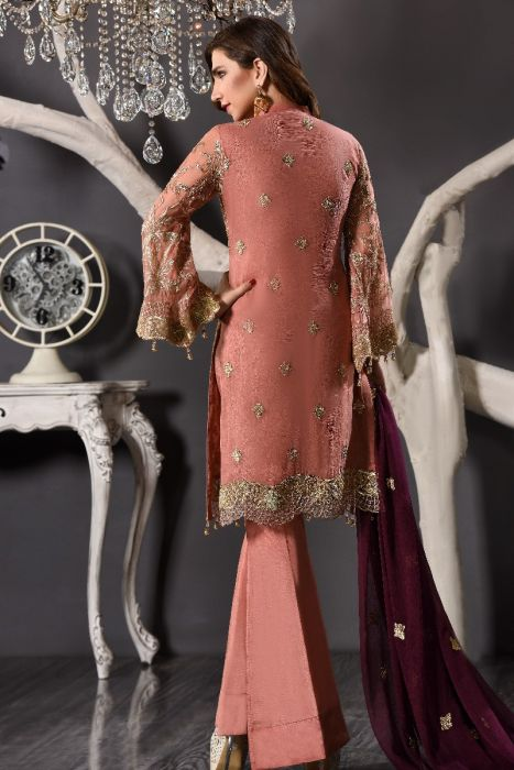 Beautiful Pakistani Party Wear of Peach Colour