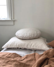 Round Chalk Pillow