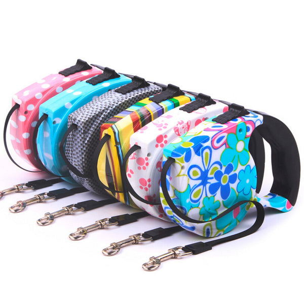 5M Multi-Color Automatic Retractable Pet Leash