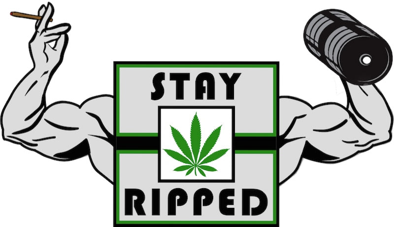 Stay Ripped at the HIGH TIMES Cannabis Cup So-Cal 2017