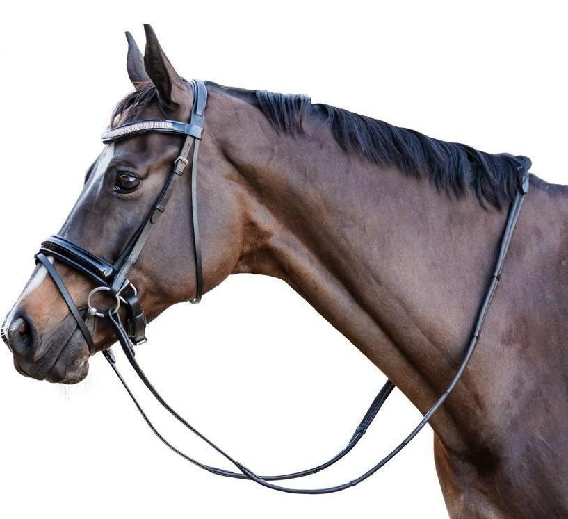 LP Competition Leather Bridle