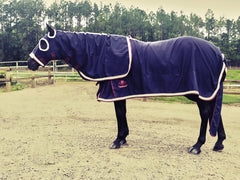 Equestrian Horse Product. Deluxe Show Rug and Hood Set