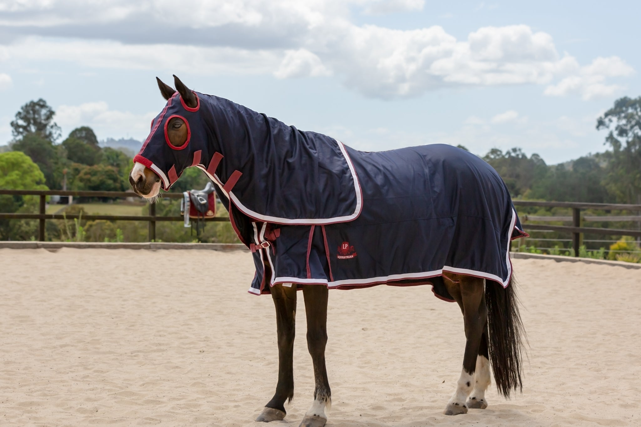 LP Deluxe Show Rug and Hood Set