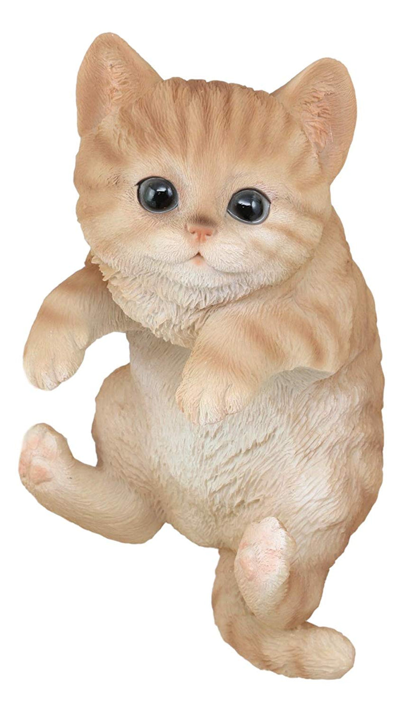 "Ebros Lifelike Pot Pal Hanging Orange Tabby Cat Statue 8"" Tall with Glass Eyes Hand Painted Realistic Feline Cat Decor Figurine Cats Kittens Kitties Animal Pet Sculpture Garden Patio Decorative"