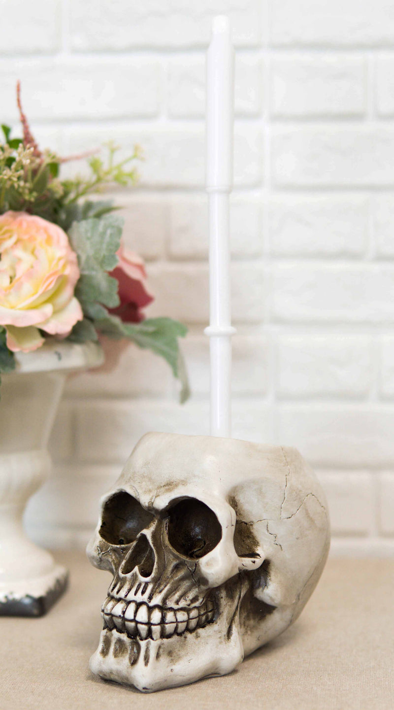 Macabre Grinning Skull Cranium Toilet Brush & Base Holder Bathroom 2 Piece Set