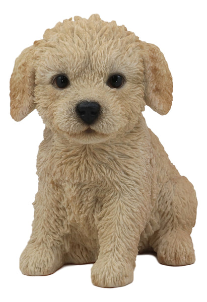 "Ebros Realistic Adorable Sitting Labradoodle Puppy Statue 6.5"" Tall Pet Pal Golden Retriever and Poodle Mutt Dog Breed Lifelike Doggie Collectible Resin Decor Figurine with Glass Eyes"