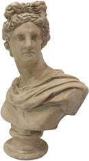 "Ebros 32"" Tall Large Ancient Classical Baroque Greek Roman God Apollo Belvedere Head Bust Antique Artifact Vatican Replica Decorative Statue in Museum Gallery Home Decor Sculpture - Ebros Gift"