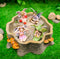 Mini Fairy Garden Fairies With Tree Stump House Nook Display Figurine Set Of 5