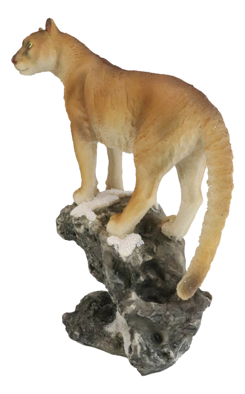 Mountain Lion Cougar Standing On Edge of Snow Capped Rock Statue Wildlife Decor