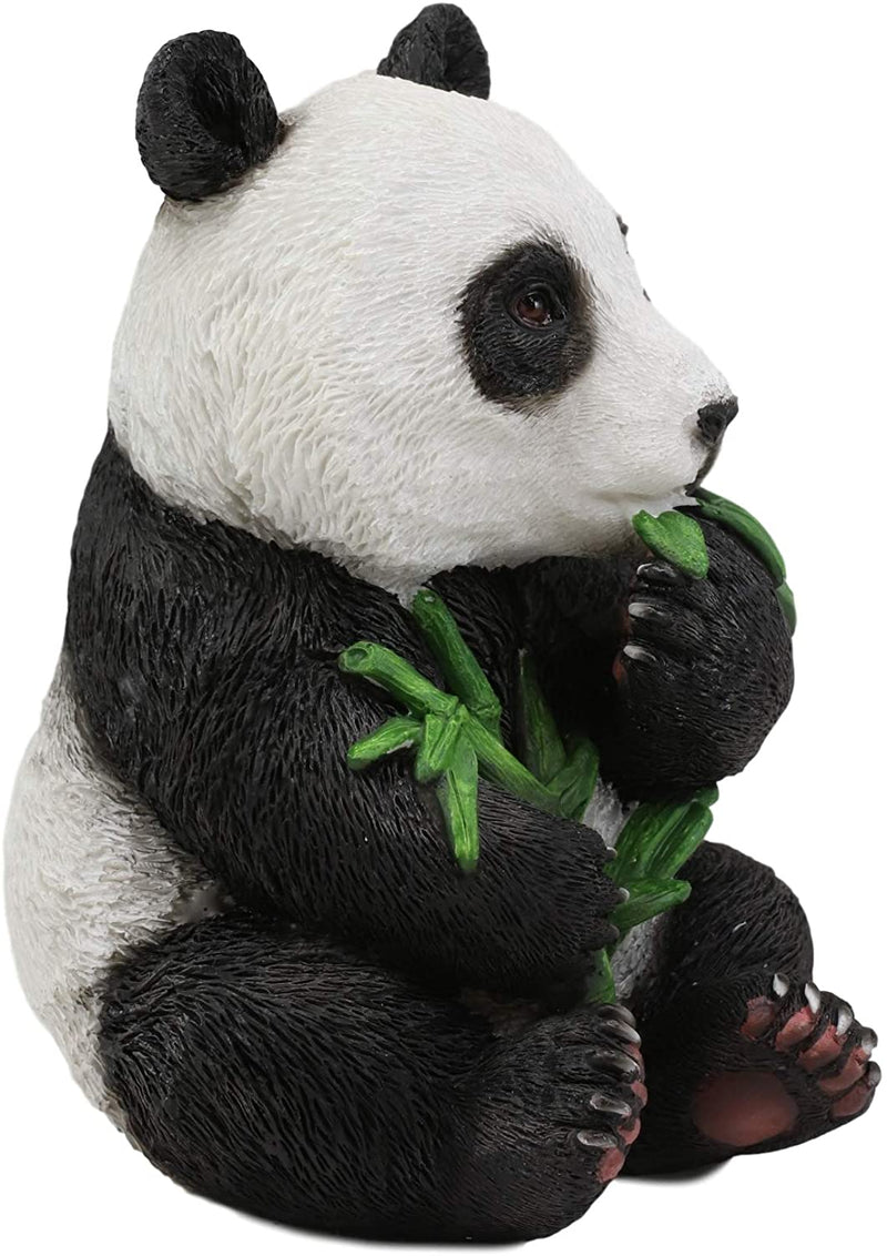 "Ebros China Giant Panda Bear Cub Baby Eating Bamboo Statue 6.5"" H Figurine"