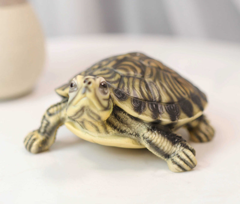 "Lifelike Yellow Bellied Slider Turtle Tortoise Figurine 4.75""L Zen Feng Shui"