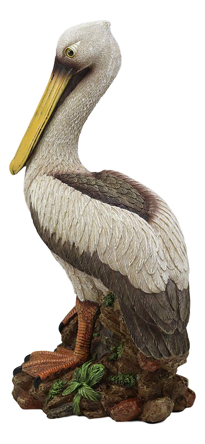 "Ebros Gift 14.25"" Tall Large Ocean Marine Beach Coastal Brown Pelican Standing On Rocks Statue Home Decor Birds Pelicans Nature As Centerpiece Decorative Sculpture Figurine"