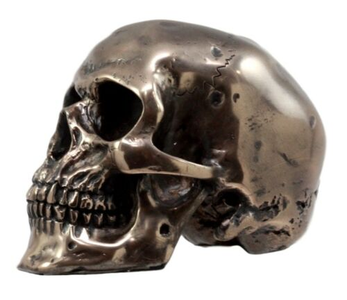 "Ebros Bronzed Resin Homosapien Skull Figurine 4.5""Long Miniature Halloween Collectible Skeleton Head Cranium Terror Sculpture Ossuary Macabre Collection Skulls Skeletons Graveyards Halloween Theme"