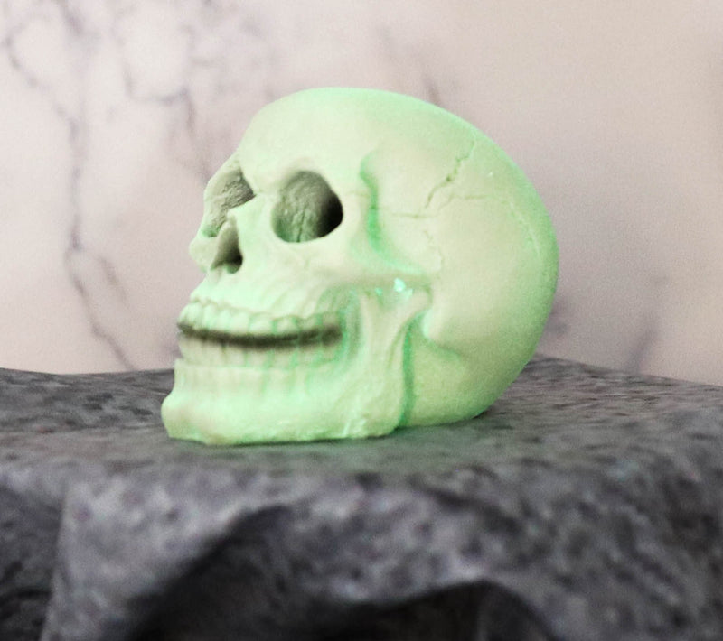 "Glow In the Dark Luminescence Skull Halloween Decorative Accessory 3.75"" Tall"