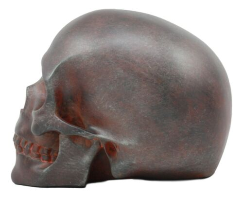 "World War Green Beret Army Rusted Skull Statue 7""Long Military Skeleton Cranium"