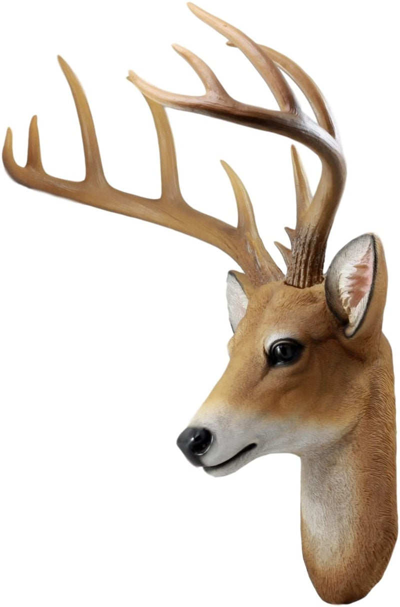 12 Point Buck Trophy Taxidermy Wall Decor Deer Head W/ Antlers Sculpture Plaque