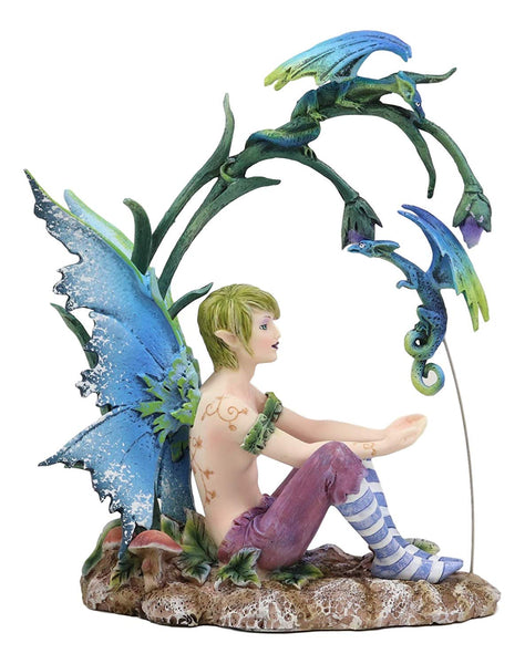 Ebros Gift Enchanted Fairy Garden Wild Boy Faerie Training His Pet Dragon Figurine Do It Yourself Ideas for Your Home Collectible Fairies Elf Nymph Pixies Fantasy Amy Brown Decor Sculpture